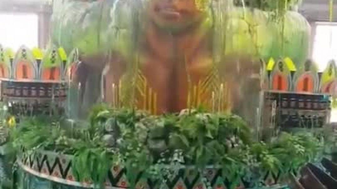 Этот бразильский экспонат будет использоваться на карнавале в Рио-де-Жанейро в 2021 году.